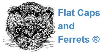 Flat Caps and Ferrets, Honeybank, Holestone Gate Road, Ashover, S45 0JS